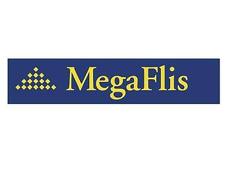 600-Megaflis